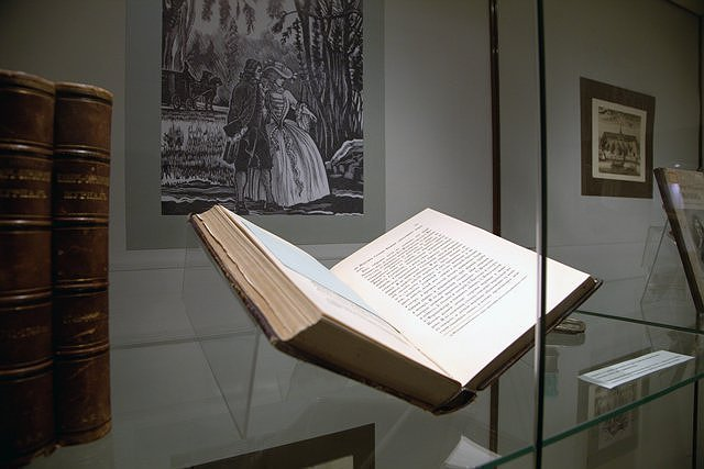 БИБЛИОНОЧЬ:ДОИ ПОСЛЕЗАКАТА