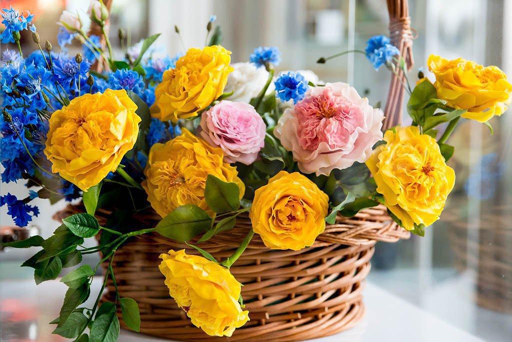 Есть слова у цветов